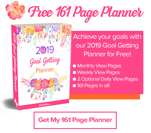 161 page goal planner