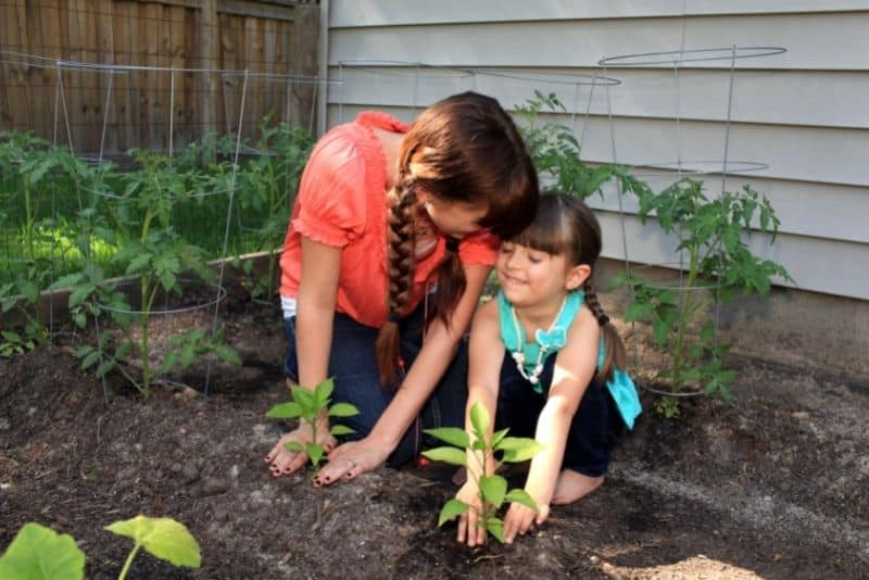 Mom and child growing a garden in their backyard.