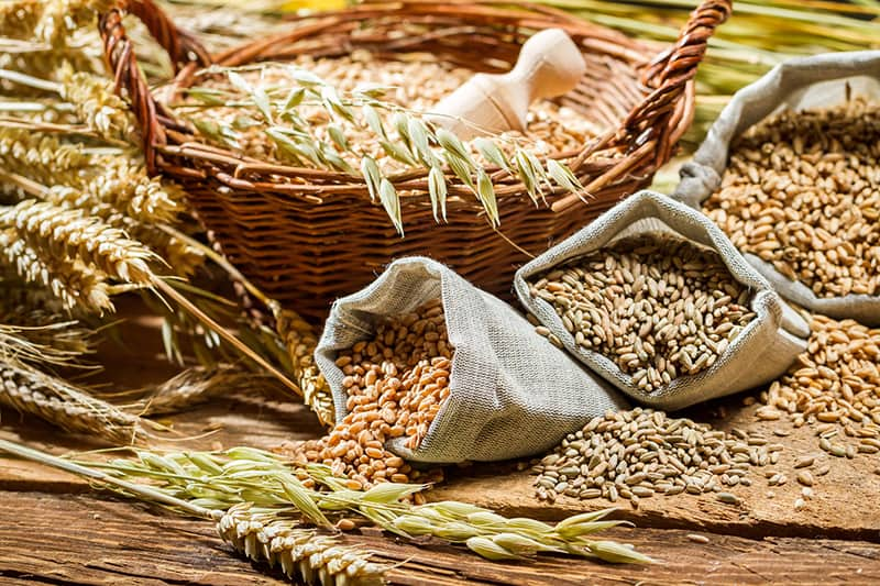 healthy grocery budgeting grains