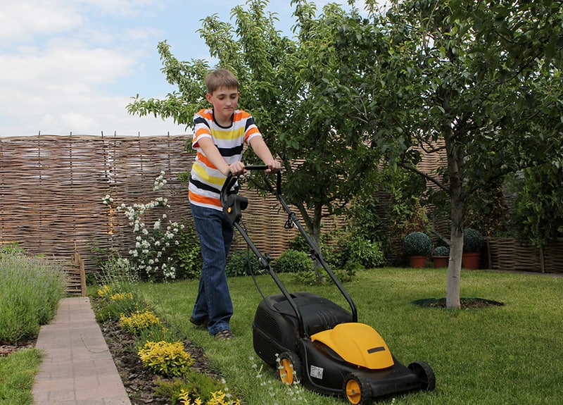how to make money as a kid - lawn care