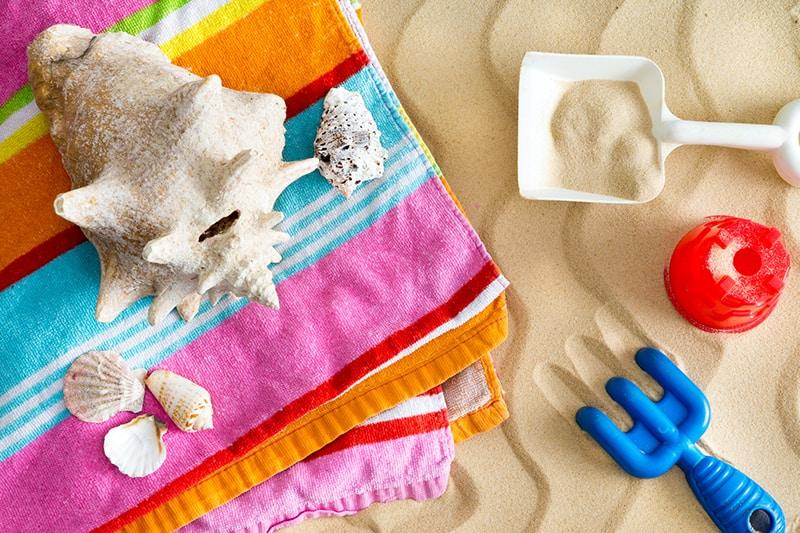 seashell activities for kids