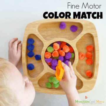 Fine Motor Color Sorting Activity